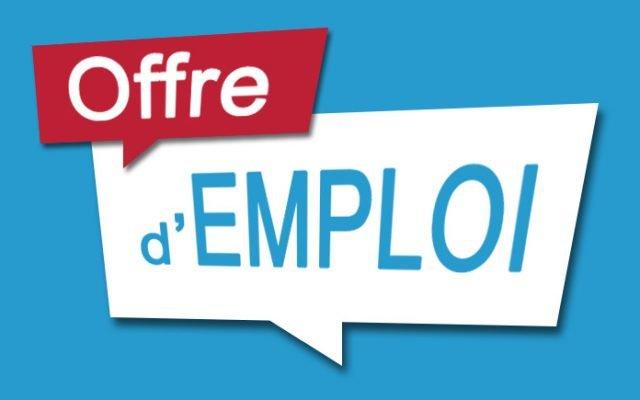 Offre d'emploi : Commissaire en développement d'entreprises
