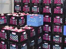 La Laiterie de l'Outaouais offre 36 palettes de lait à Moisson Outaouais